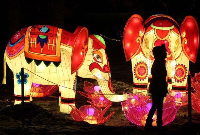 Китайські фонарики на Співочому полі