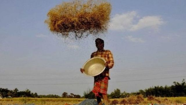 ખેડૂતની પ્રતીકાત્મક તસવીર