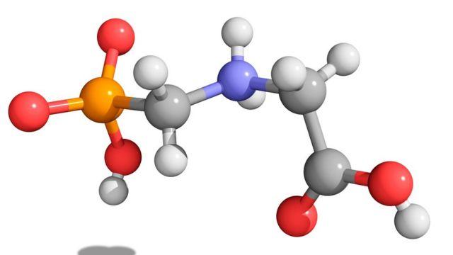รูปแบบองค์ประกอบโมเลกุลของไกลโฟเซต