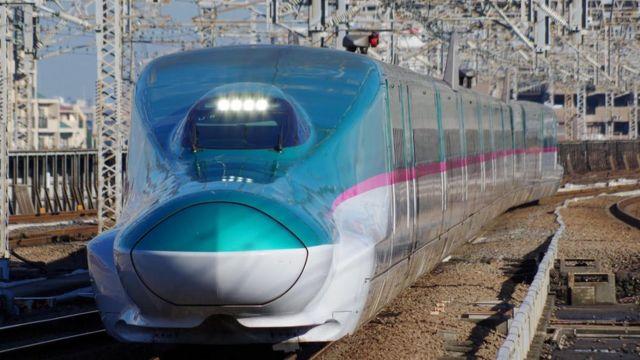Rogue slug blamed for Japanese railway chaos