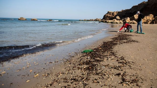 Men clean the sand of tar in Hadera