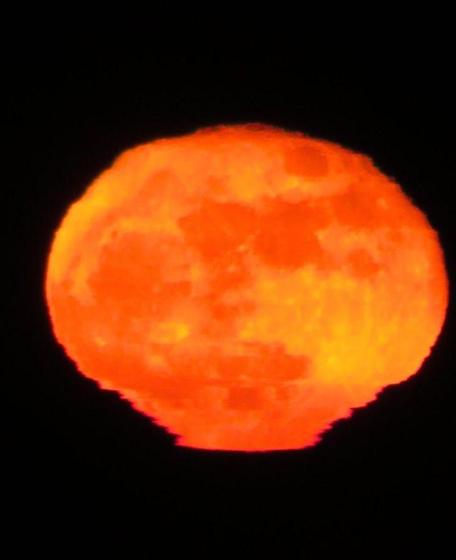 Luna creciente de Katherine Young