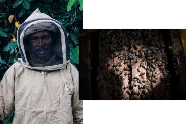 The forest beekeepers of Zanzibar