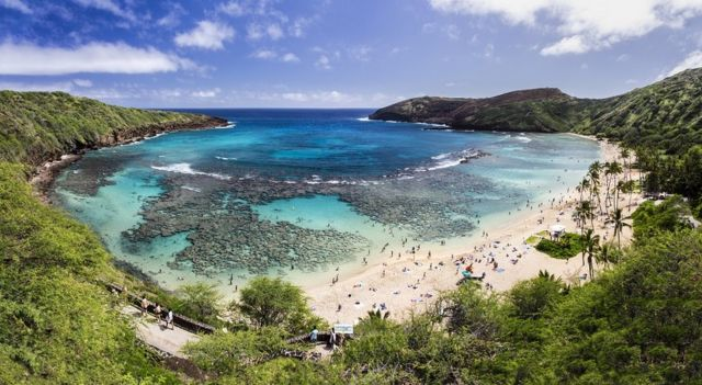 Panoramic view of Hanauma Bay in Hawaii - it's a beautiful sunny day, and you can see the coral reef under the turquoise waters