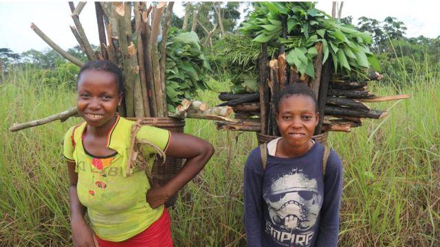Les concessions exigent des communautés qu'elles utilisent la forêt de diverses manières pour gagner leur vie, pour encourager la résilience économique