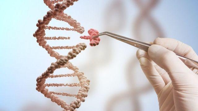 Edición genética
