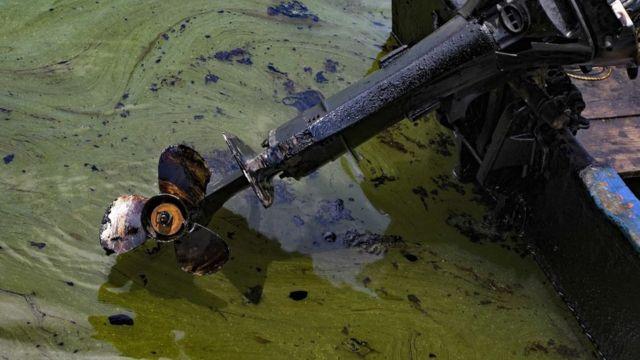 Embarcaciones afectadas por la contaminación.