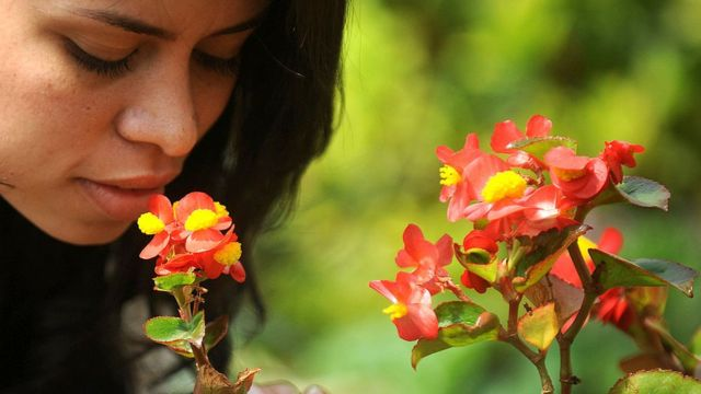 Mujer oliendo flores.