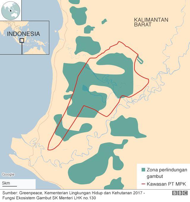 Peatland map