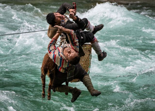 Two men and an animal travel along a zip line over a strong river