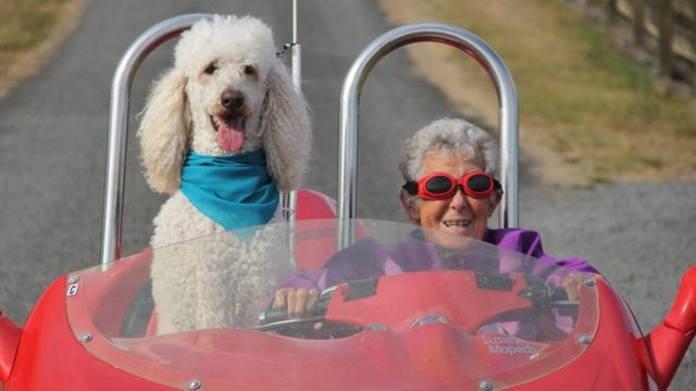 Norma Bauerschmidt and her dog in a car