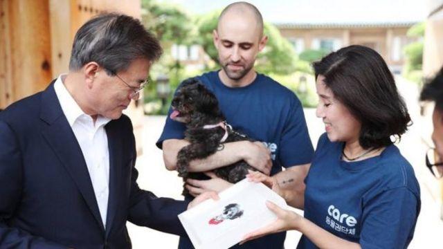 โทรี เป็นสุนัขที่รับอุปการะมาจากกลุ่มสิทธิสัตว์ CARE