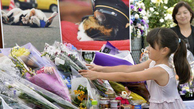 A little girl leaving flowers in honour of Tama