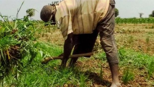 Burial of 43 farmers killed by Boko Haram