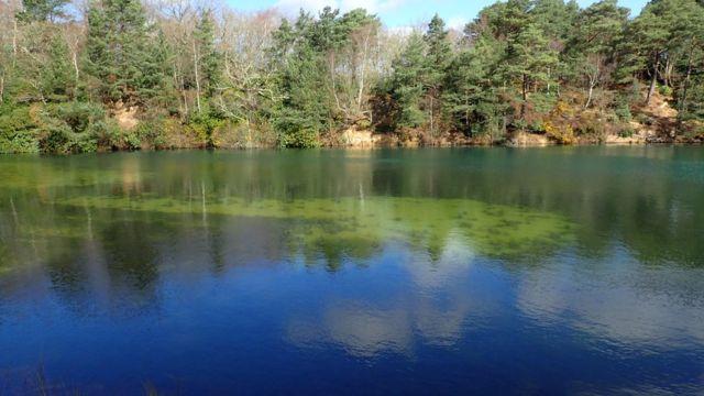 Hermoso paisaje con árboles y agua verde, azul.