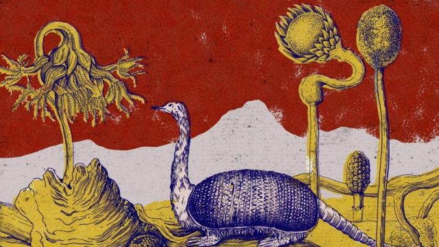 Ilustração de combinação de avestruz com tatú