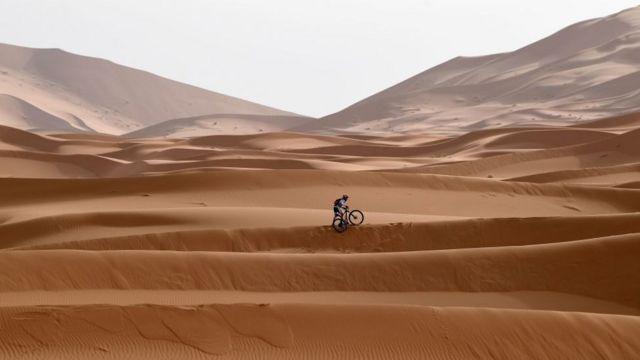hamadar sahara