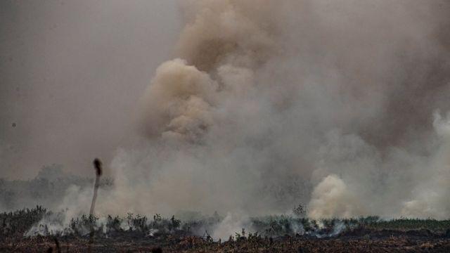 Vista de um setor queimado do Pantanal, município de Porto Jofre, localizado no município de Pocone, estado do Mato Grosso, Brasil, 19 de setembro de 2020.