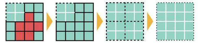 Ilustración de células volviéndose verdes y luego consolidándose