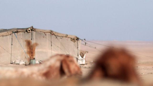 امرأة سورية قرب الرقة