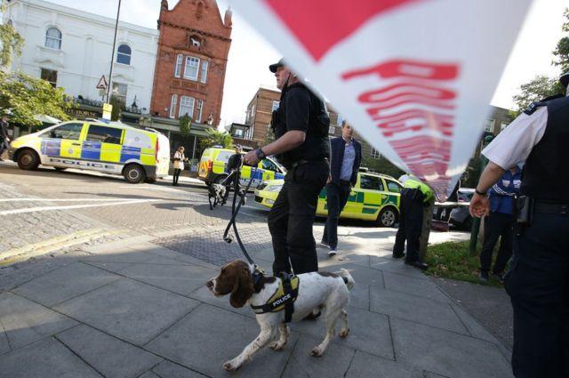 На місці також працювали поліцейські із натренованими собаками