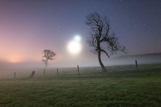 Neblina Binaria de Ainsley Bennett