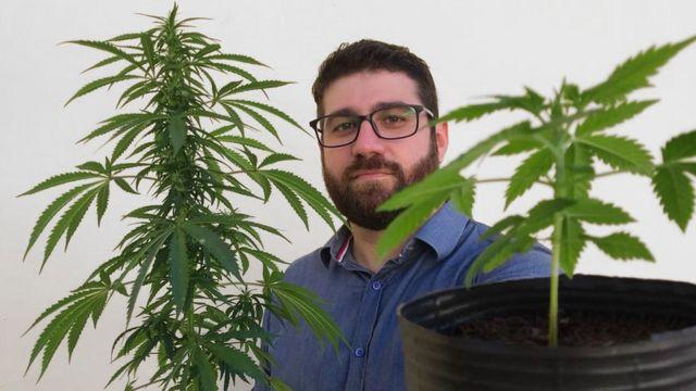 Felipe Farias segurando duas plantas de maconha
