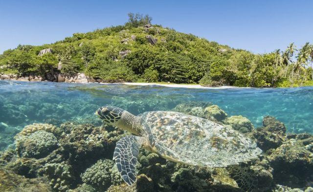 Les belles îles attirent des milliers de touristes