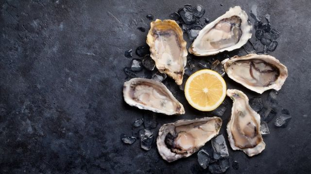 Opened oysters and lemon over ice on stone table. Half dozen.