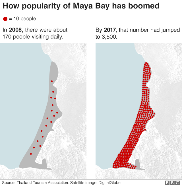 Graphic showing how the popularity of Maya Bay has boomed in recent years