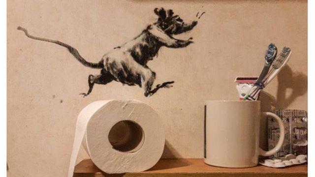 老鼠在厕所纸卷上跳来跳去,挤牙膏也很好玩(photo:BBC)