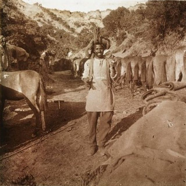 Anzak Koyu'nda bir Hint, Mayıs 1915