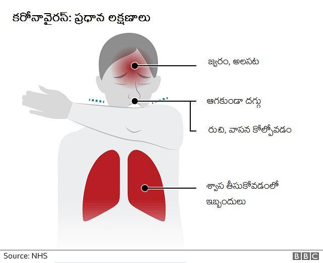 COVID-19 Symptoms | Coronavirus Symptoms | కరోనావైరస్ జాగ్రత్తలు