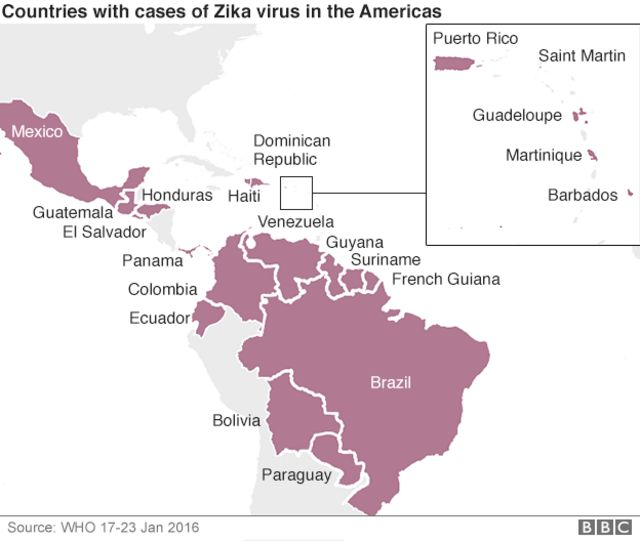 Zika crisis: World Health Organization in emergency talks