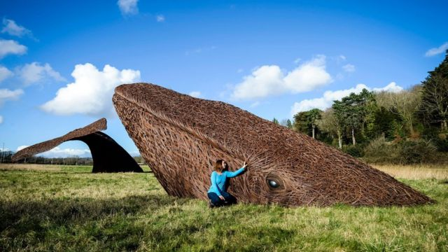Bristol Whales willow sculpture dives into nature reserve home
