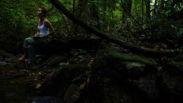Jelly Green em meio a árvores em área de floresta no Brasil