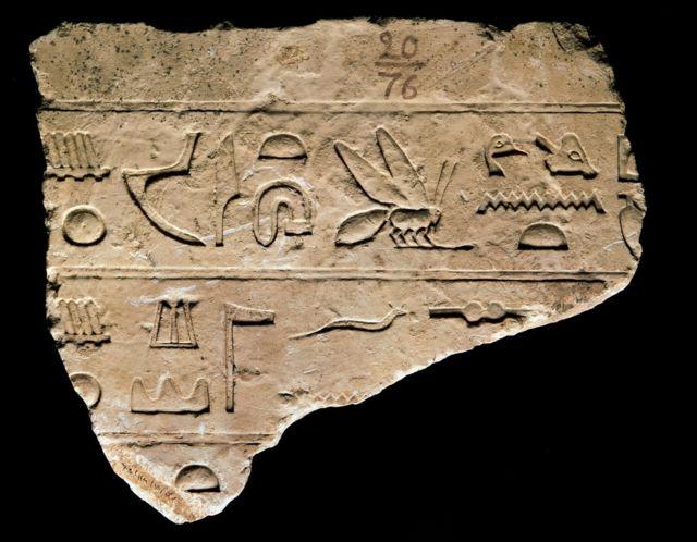 Fragmento de jeroglíficos egipcios que incluyen un símbolo de abeja.
