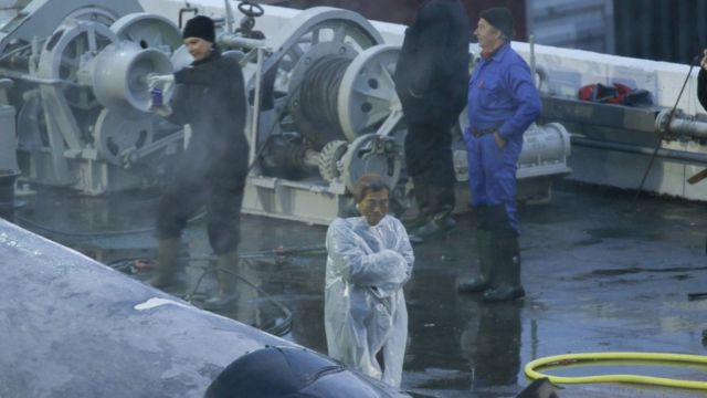 A Japanese inspector and some of the crew taking pictures of the whale