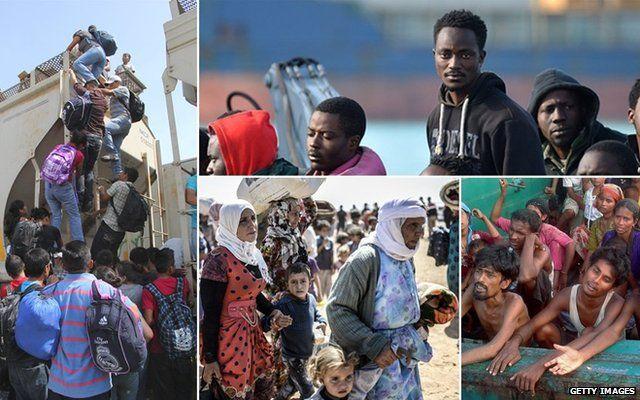 Scenes of migration