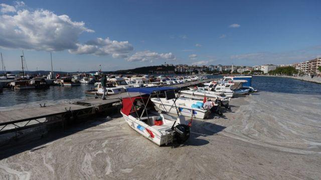 Müsilaj, Kasım ayından bu yana Marmara Denizi'nde görülüyor.