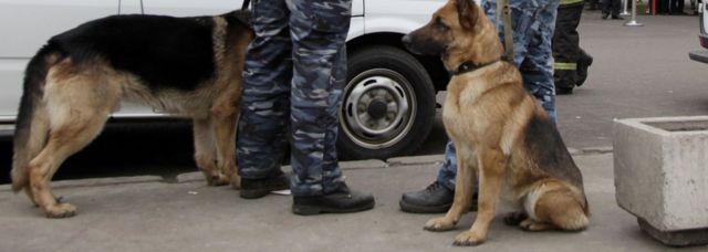 پلیس روسیه عملیات گستردهای را برای مقابله با این هشدارهای قلابی ترتیب داده است