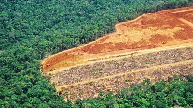 Bosque amazónico junto a un vasto terreno donde se talaron los árboles y se ve la tierra de color rojizo sin cobertura