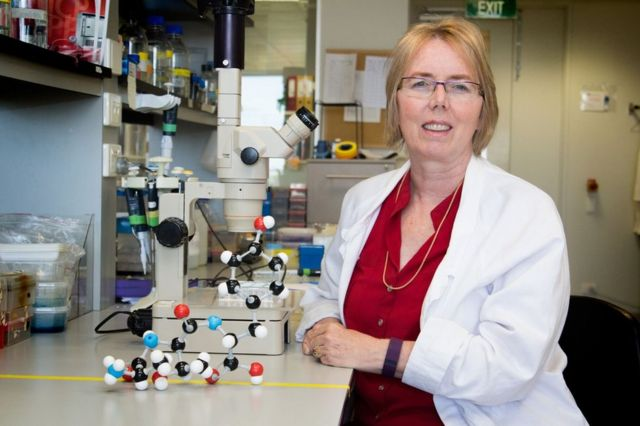 Antibiotic resistance: Scientists 'unmask' superbug-shielding protein