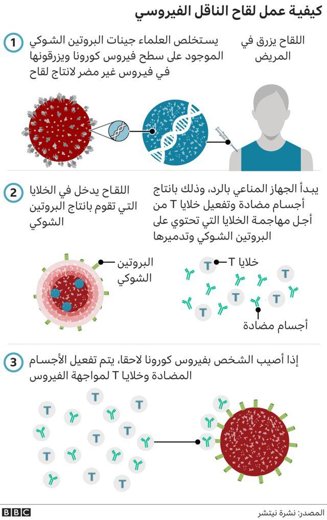 لقاح الناقل الفيروسي