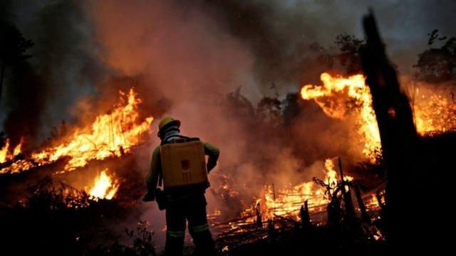 Agente do Ibama combatendo fogo na Amazônia