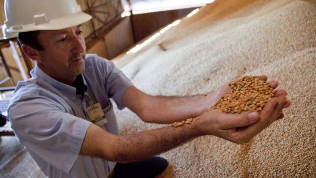 Productor de soja en Brasil.
