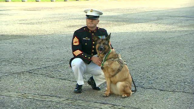 Lucca, with her owner Gunnery Sergeant Chris Willingham