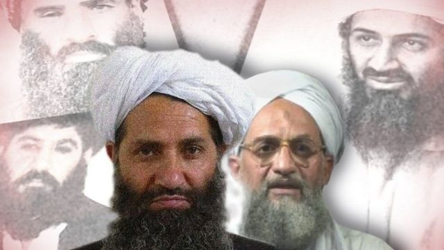 Hibatullah Akhundzada (main focus left) leads the Taliban and Ayman al-Zawahiri heads al-Qaeda