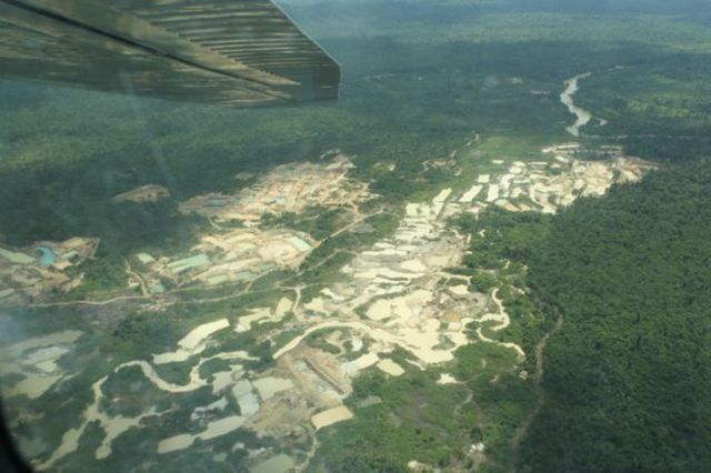Brasil minas bosques amazonas