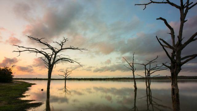 національний парк в Танзанії